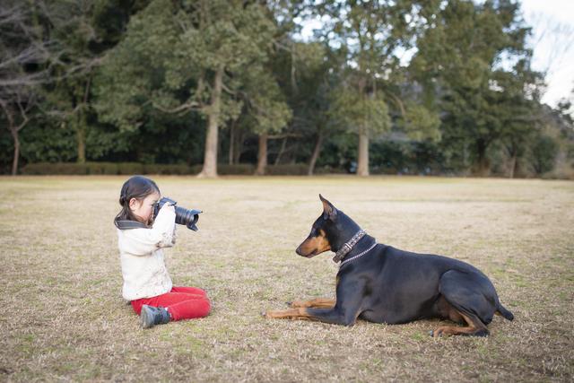 anifareが保護犬の「オンライン譲渡会」を千葉県成田市で開催します!