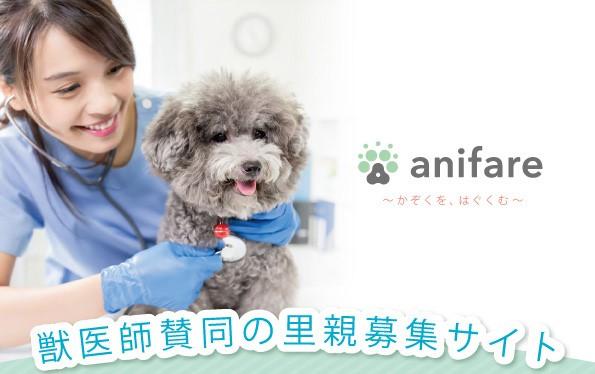 獣医師賛同の里親募集サイト『anifare(アニフェア)』 獣医師によるブリーダー往診を全国エリアで開始