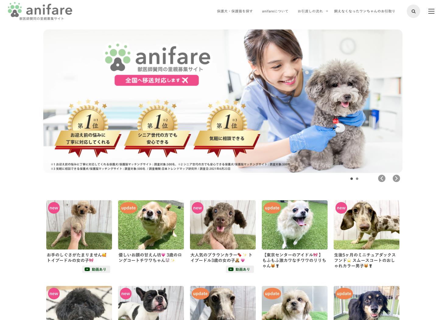 獣医師賛同の⾥親募集サイト「anifare」(アニフェア)が 保護⽝・保護猫譲渡数4,000頭を達成